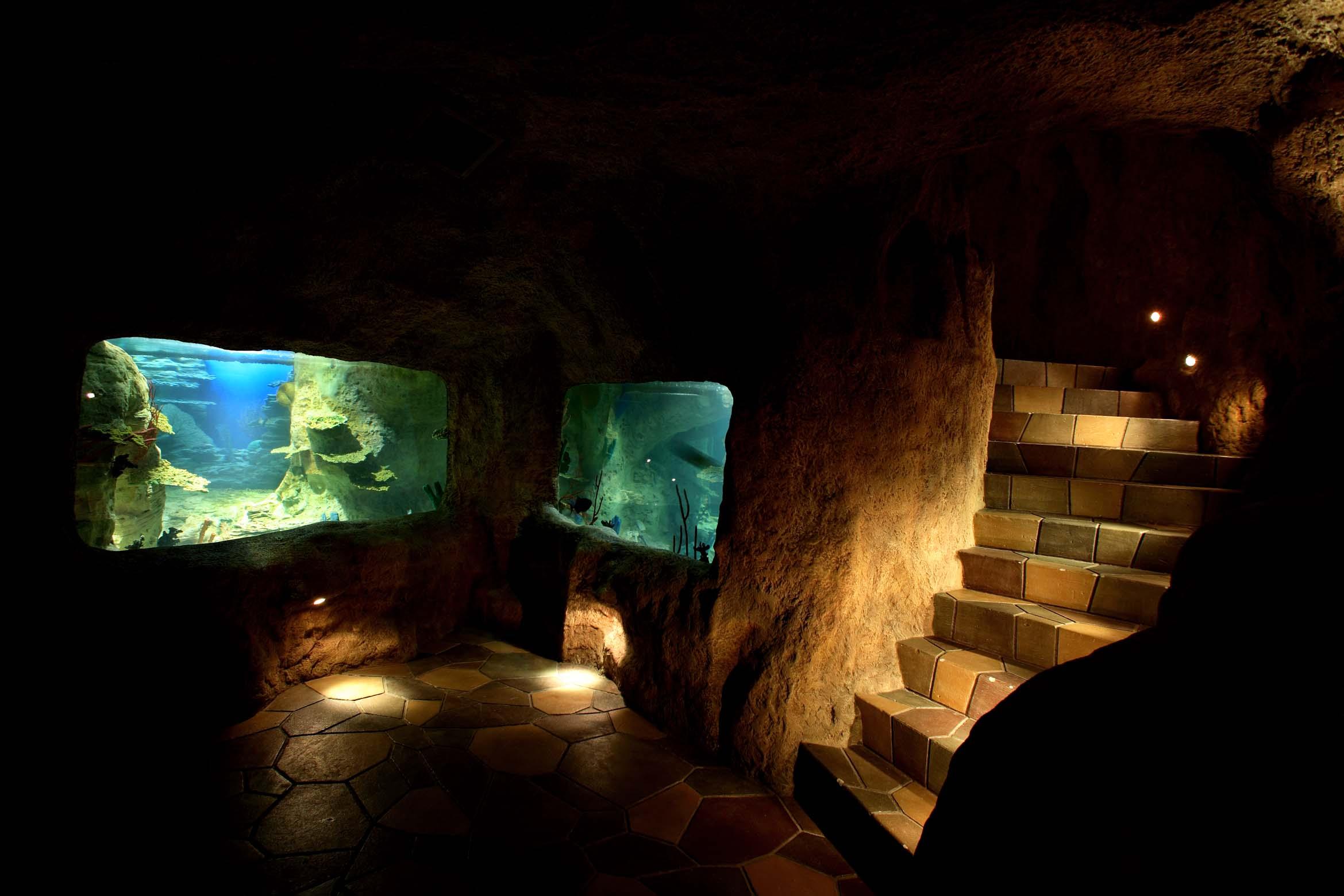 Аквариумы огромные, от 10 кубометров и больше, частные Океанариумы